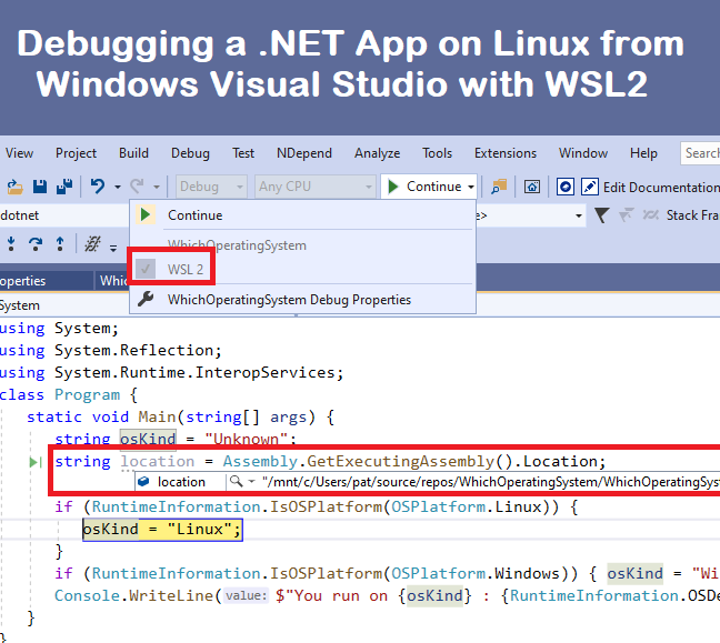 Debugging a .NET App on Linux from Windows Visual Studio with WSL2